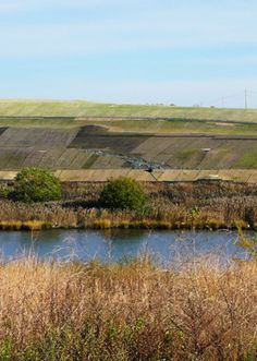 """Freshkills Park Protected Staten Island During Hurricane Sandy. """"The park's hills and waterways spared nearby neighborhoods like Travis, Bulls Head, New Springville and Arden Heights from much worse flooding."""""""