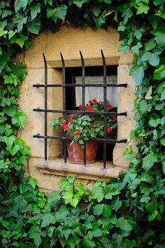 Flowered window in Palau Sator | Catalonia