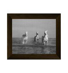 horse photography, animal print, horse print, animal black and white, horse photo, horse art, black and white prints, black and white horse di AlemiPrints su Etsy