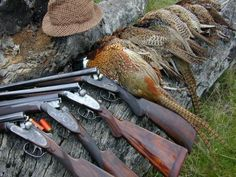 This is the official page of Gentleman Bobwhite, dedicated to the outdoor lifestyle and the pleasures of pursuing the gentleman of game birds: the bobwhite quail. Grouse Hunting, Waterfowl Hunting, Pheasant Hunting, Duck Hunting, Turkey Hunting, Hunting Pictures, Hunting Rifles, Outdoor Life, The Great Outdoors