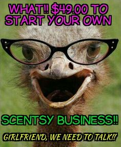 Buy, Host, or Join Go To: http://BernadetteWard.Scentsy.US Follow Me on FaceBook at: Bernadette Your Independent Scentsy Consultant