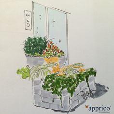 apprico Empfangen nachher 2