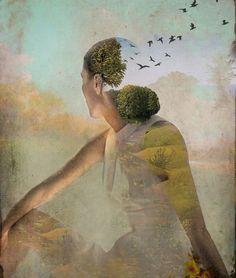 Paulo Coelho /Catrin Welz-Stein ~ Quotes /Aforismi   Tutt'Art@   Pittura * Scultura * Poesia * Musica  