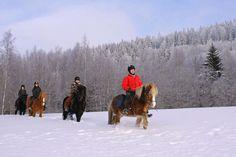 Riding in Northern Carelia