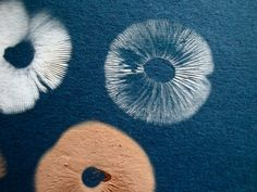 Mushroom Spore Prints. Easy to do and a perfect compliment to the sun print cyanotypes that are so popular.