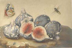 Коллекция картинок: Натюрморты Джованна Гарцони