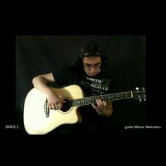 guitar Marius Marinescu 2021 Birds 2, Music Instruments, Guitar, Musical Instruments, Guitars