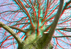 3-D Glasses  needed to see picture properly...  anaglyph. Boom Spoorsingel Rotterdam 3D