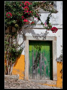 Had our thank you cards in front of this door in Obidos, Portugal