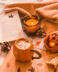 Autumn Cozy, Autumn Diys, Autumn Fall, Wonderful Day, Fall Images, Autumn Lights, Autumn Scenes, Autumn Aesthetic, Fall Wallpaper