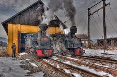 Mocanita Romania 2011,   Steam locomotive at the depot. by Hans Brinkel
