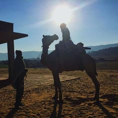 sometimes it's important to take a day off from work and explore - sunrise camel trek in Pushkar - Rajasthan,  India