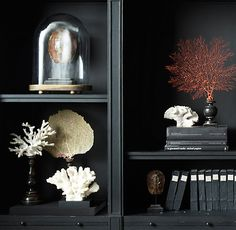 CAST FLOWER CORAL SPECIMEN $99 An eco-conscious alternative to endangered natural coral, our realistic reproduction brings the beauty of the sea to a mantel or shelf.