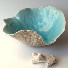 , Large Cup Fungus Bowl - Porcelain textured bowl with aqua glaze. , Large Cup Fungus Bowl - Porcelain textured bowl with aqua glaze. on Etsy, €. Hand Built Pottery, Slab Pottery, Pottery Bowls, Ceramic Pottery, Pottery Art, Porcelain Ceramics, Ceramic Bowls, Ceramic Art, Porcelain Tile