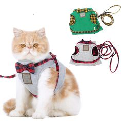 A well-fitting harness will keep your kitty safe and comfortable when walking, hiking and participating in other outdoor recreation on a leash! Estimated delivery time 14-25 business day