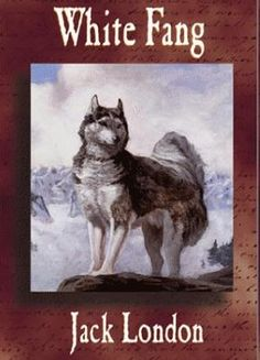 Jan. 12th: Author Jack London was born on this day in 1876. Think Call of the Wild and White Fang (pictured here).