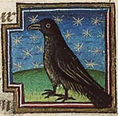 """""""A raucous clamor outside the sanctuary as crows flock high on the roof of the Monastery. At the sound of the bells, a black-feathered murder of them springs up into the open wind.""""   QUOTE: -- from the novel Sinful Folk     http://sinfulfolk.com   ILLUSTRATION: The Medieval Bestiary Raven - Museum Meermanno, MMW, 10B 25"""