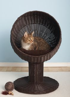 The Refined Feline Kitty Ball Hooded Cat Bed & Reviews | Wayfair