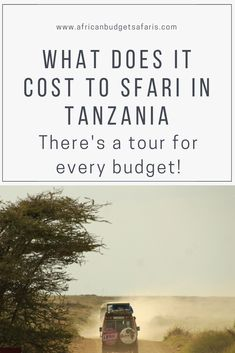 The good news is, there's a Tanzania Safari package for every budget! The cost of a Tanzania Safari is determined by a number of factors, but don't stress, we've got it covered in this post. Read on.