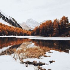 autumn, awesome, beauty, cozy, fall
