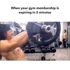 funny gym memes hilarious \ funny gym memes - funny gym memes humor - funny gym memes hilarious - funny gym memes woman - funny gym memes hilarious fitness humor - funny gym memes personal trainer - funny gym memes haha so true - funny gym memes men Humor Videos, Memes Humor, Gym Humor, Gym Memes, Funny Video Memes, Funny Relatable Memes, Funny Videos, Funny Jokes, Hilarious