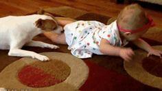 Petit chien apprend à bébé à ramper sur le sol