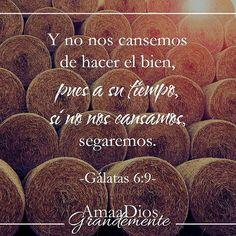 Gálatas 6:9 No nos cansemos, pues, de hacer bien; porque a su tiempo segaremos, si no desmayamos. ♔