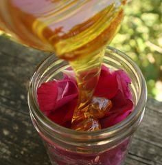 Rose Petal Remedy (Oxymel) - sweet and sour medicinal syrup made with honey & apple cider vinegar