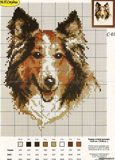 Billedresultat for knit chart rough collie Cross Stitch Numbers, Cross Stitch Bird, Cross Stitch Animals, Counted Cross Stitch Patterns, Cross Stitch Charts, Cross Stitch Designs, Cross Stitching, Cross Stitch Embroidery, Dog Chart