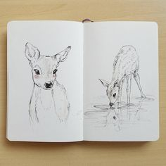 "217 Likes, 36 Comments - Raahat ↟ (@raahat_k) on Instagram: ""Dear, oh deer. Couple of quick moleskine sketches.  ~  #deer #deerdrawing #wildlife #sketch…"""