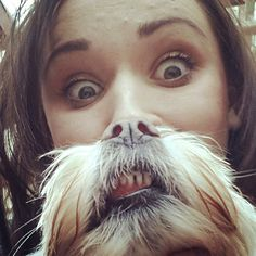In response to the popular 'Cat Beard' photo meme, dog owners started doing a canine equivalent called 'Dog beards'. Love My Dog, Beard Pictures, Dog Pictures, Cute Funny Animals, Funny Dogs, Dog Bearding, Cat Beard, Image Hilarante, Beard Trend