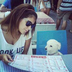 17 Lugares pet friendly en Buenos Aires que vos y tu mascota deberían conocer—Buzzfeed