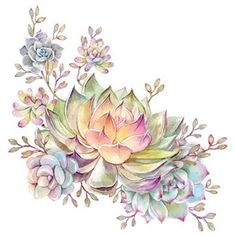 30 Trendy Ideas For Succulent Tattoo Drawing Watercolor Painting Succulents Drawing, Watercolor Succulents, Watercolor Flowers, Watercolor Paintings, Watercolor Flower Tattoos, Succulents Painting, Succulent Tattoo, Framed Art Prints, Canvas Prints