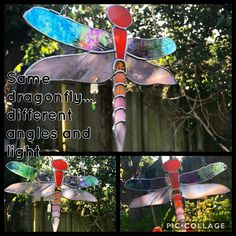 Once Twice Thrice Loved Stained Glass dragonfly This beautiful orange toned dragonfly is bright and beautiful and is around 8 inches in wing span . Different Angles, Pink Tone, Iridescent, Stained Glass, Reflection, Sunshine, Wings, Bright, Colour