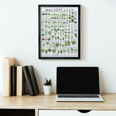 Make your house a little greener with this cheery chart of over a hundred popular potted plants! A veritable horticultural who's who, each leafy friend has been lushly illustrated and labeled with nomenclature both common and scientific. Potted Plants, Indoor Plants, Garden Plants, House Plants Hanging, Common House Plants, Strange Flowers, Herbal Magic, Walnut Stain, Plant Decor