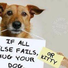 If all else fails, hug your dog