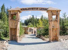 Atrakce Království lesa Oahu, Arch, Outdoor Structures, Garden, Longbow, Garten, Lawn And Garden, Gardens, Wedding Arches