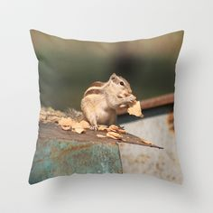 Lunch Time Throw Pillow by Angelika Kimmig - $20.00