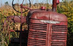 Back in the trees on the farm, there are always old tractors and cars.    Bright fall day colors.