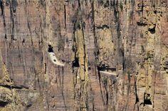 En China hay numerosas carreteras y rutas que hacen suspirar como, por ejemplo, la parte en que la mencionada Karakorum Higway entra en su territorio. Pero aún hay algo más espectacular que aquello. Se la conoce como Guoliang Tunnel Road y es una carretera que recorre una montaña agujereada como un queso que a vista de pájaro parece absolutamente irreal. Son sólo 1´2 kilómetros, pero que valen (y asustan) por más de mil.