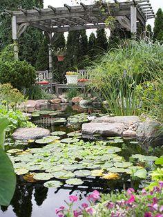 Gazebo overlooking water garden. Beautiful flowering blooms and lots of green plants.