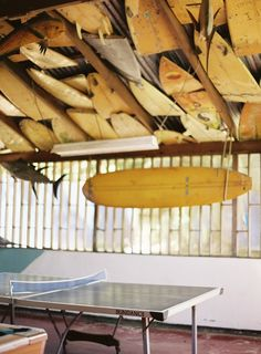 Ceiling of surfboards