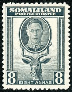 Somaliland Protectorate 1951 King George VI Decimal Surcharged SG 129 Scott 120 Fine Used Other Somaliland Stamps HERE Buy Stamps, British Colonial, King George, Commonwealth, Travel Posters, Postage Stamps, African, History, Animals