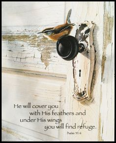 """[""""Simple yet powerful, this mounted canvas print depicts a colorful wren perched on top of an antique doorknob. The fragility of the bird reminds us of how much we need God's protection and shelter. Hang this image in your home for a daily reminder that you live under His wing. Text Reads:<\/b>\""""He will cover you with His feathers, and under His wings you will find refuge.\"""" - Psalm 91:4<\/i>The back of\r\n the print is hollowed out to reduce the weight hanging from ..."""