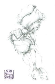 graphite drawing, 2015