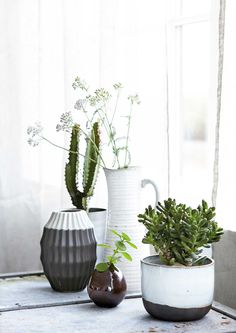 from House Doctor Everyday House Doctor, Cacti And Succulents, Potted Plants, Deco Nature, Pot Plante, Plants Are Friends, Interior Plants, Cactus Y Suculentas, Ceramic Planters