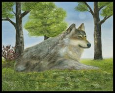 """Throughout history, the Gray Wolf has been worshipped, feared, and hunted, as told through fables, tales and literature. In her latest painting, Divin's use of color on """"The Gray Wolf"""" makes him come to life. His face looks as if it could be easily touched. """"The Gray Wolf"""" is a realistic oil painting by Divin that makes one wonder what is going through the mind of the lone wolf as he rests upon the fresh grass."""