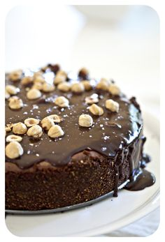 Dark chocolate cheesecake with hazelnuts