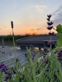Sonnenaufgang am Neusiedlersee in der Seehütte zum Mieten in Rust am Neusiedlersee. Celestial, Sunset, Outdoor, Stilt House, Romantic Vacations, Sunrise, Cottage House, Sunsets, Outdoors
