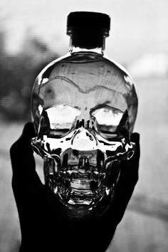 Crystal Head Vodka - Dan Aykroyd was autographing these at Viscount a while back.